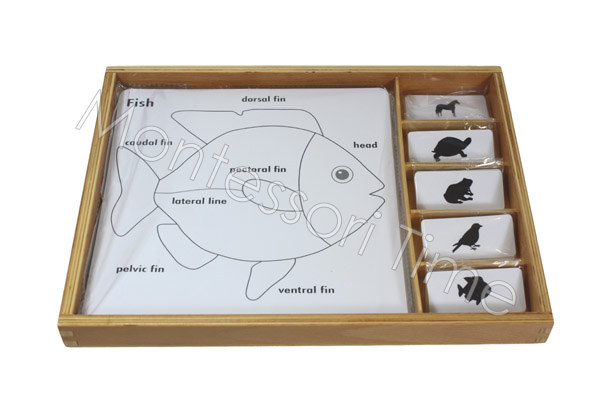 Zoology Puzzle Activity Set